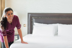 HBHousekeeper1-canstockphoto11974602